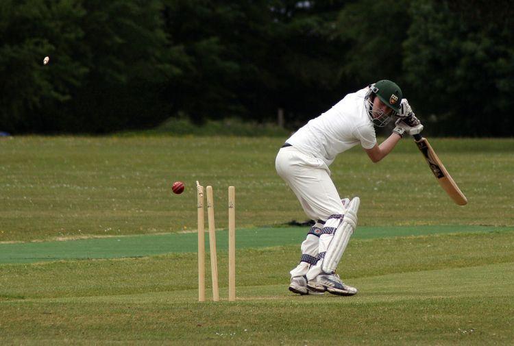 Cricket - Photo by Lemonlolly - CC-BY-SA-3.0